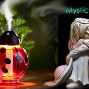 Lady Bug Humidifier