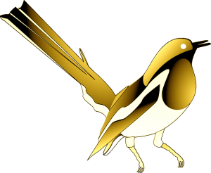 Gold Magpie Membership